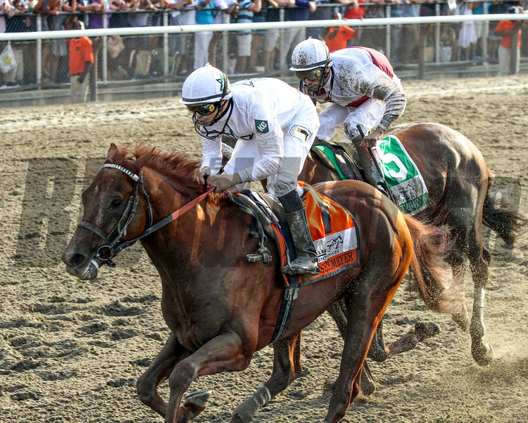 Drosselmeyer w/Mike Smith up win the 142nd Running of the Belmont Stakes at Belmont Park on June 5, 2010 just in front of Fly Down w/JohnVelazquez up.<br /> Photo by: Chad Harmon