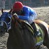 Summer Bird 141st Belmont Stakes