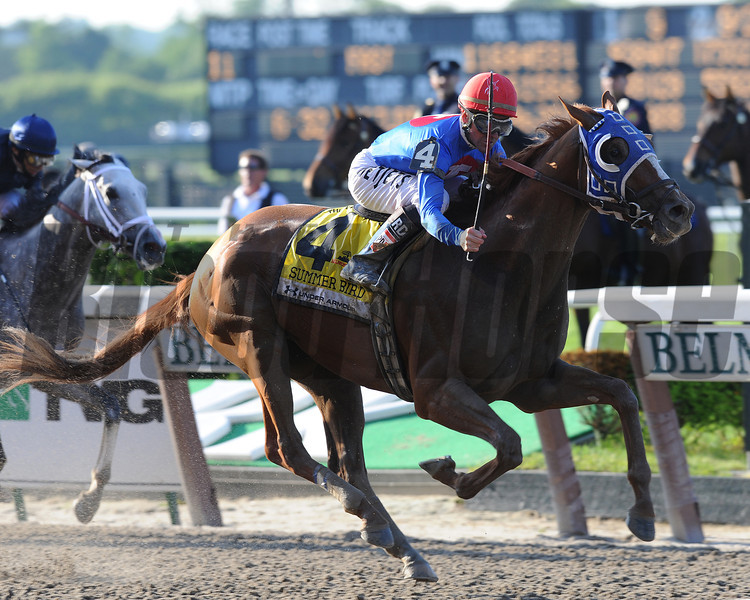 Summer Bird defeats Dunkirk (2nd) and Mine That Bird (3rd) in The 2009 Belmont Stakes. <br /> Photo by: Adam Coglianese