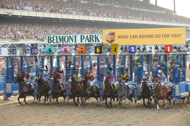 Da' Tara wins the 2008 Belmont Stakes<br /> Adam Coglianese