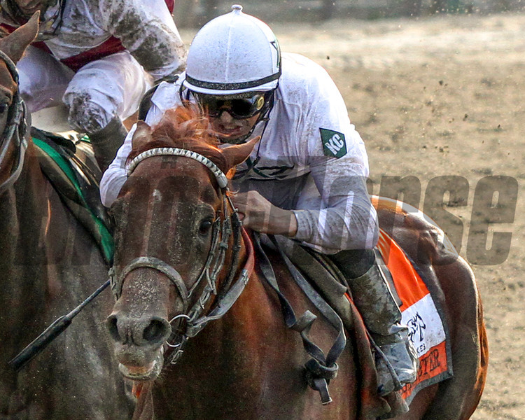 An intense Mike Smith guides Drosselmeyer to victory in the 142nd Running of the Belmont Stakes at Belmont Park on June 5, 2010 at Belmont Park.<br /> Photo by: Chad Harmon