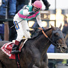 Empire Maker wins the 2003 Belmont Stakes.<br /> Skip Dickstein Photo