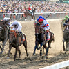 The top 6 finishers in the 142nd Running of the Belmont Stakes drive to the finish at Belmont Park on June 5, 2010. Drosselmeyer w/Mike Smith up were victorious.<br /> Photo by: Chad Harmon