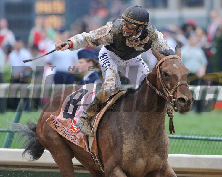Calvin Borel on Mind That Bird wins the 1354th Kentucky Derby at Churchill downs in Louisville, Kentucky May 2, 2009.