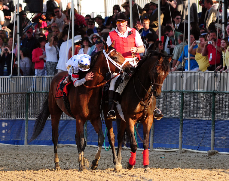Big Brown after winning the 133rd running of the Preakness Stakes at Pimlico.