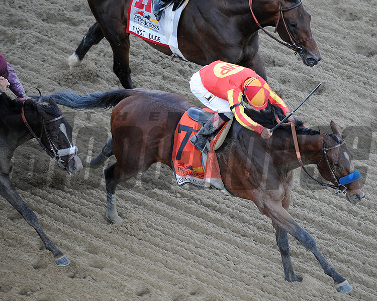 Lookin at Lucky, Martine Garcia up, wins the 2010 Preakness Stakes, Pmilico Race Track Baltimore MD Mathea Kelley 5/15/10