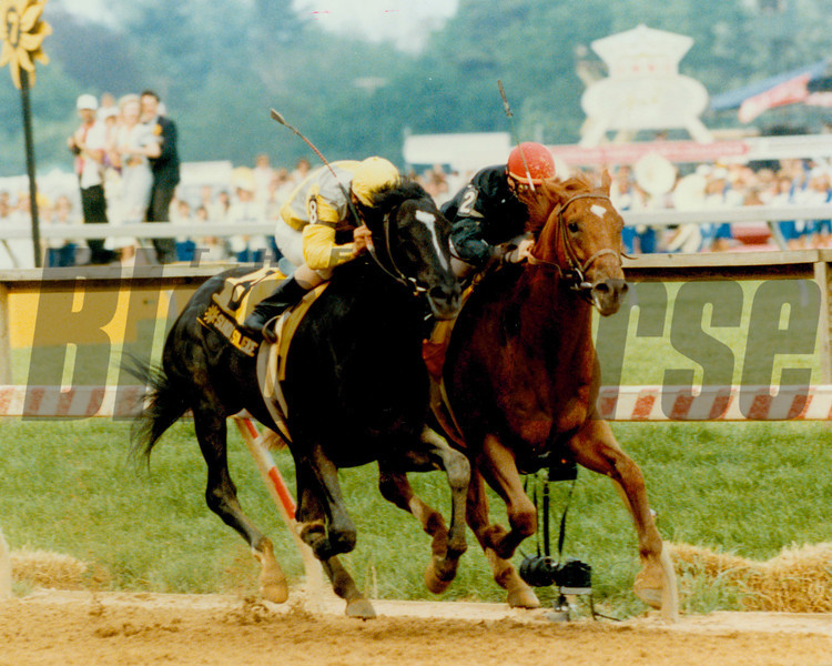 Sunday Silence & Easy Goer battle down the stretch in the 1989 Preakness Stakes at Pimlico Racecourse.<br /> Photo by: SKip DIckstein
