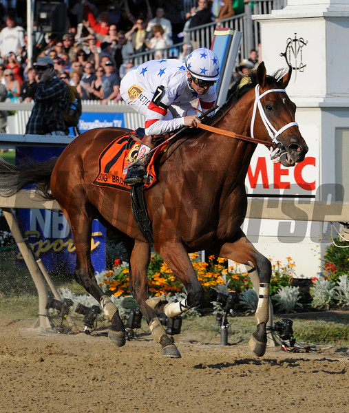 PHOTO BY SKIP DICKSTEIN -  Jockey Kent Desormeaux  guides  Big Brown in  demolishing a field of 12 competitors to win the 133rd running of the Preakness Stakes at Pimlico Race Course in Baltimore, Maryland May 17, 2008.