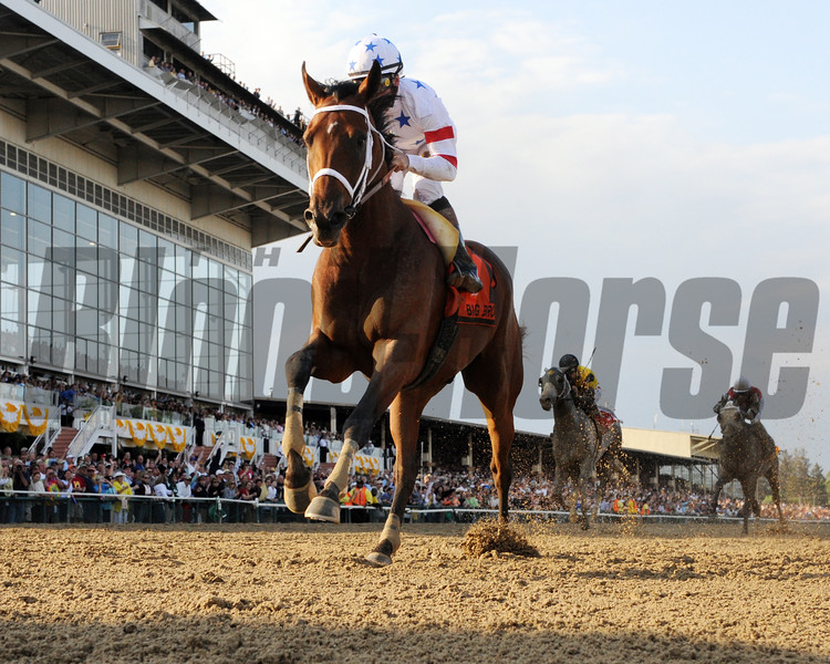 PHOTO BY SKIP DICKSTEIN - Jockey Kent Desormeaux guides Big Brown to the win in the 133rd running of the Preakness Stakes at Pimlico Race Course in Baltimore, Maryland May 17, 2008.