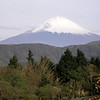 Mount Fuji from Hotel back garden