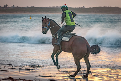 Vicki Moritz - Horse bucking