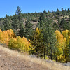 2017: Awesome Autumn in Plumas County