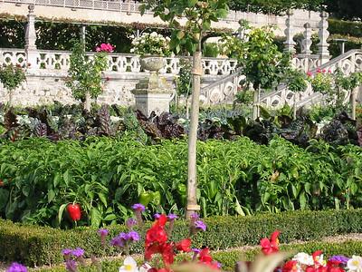 Villandry gardens