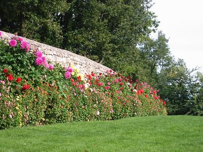 Villandry -- flowered wall