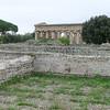 Paestum: Ruins of ancient houses