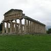 Paestum:  Temple of Athena
