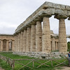 Paestum:  Temple of Hera