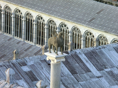 Replica of the Pisa Griffin (from 11th C Spain) on the roof of the Duomo, visible from the top of the Leaning Tower; the original of this work is in the Duomo Museum