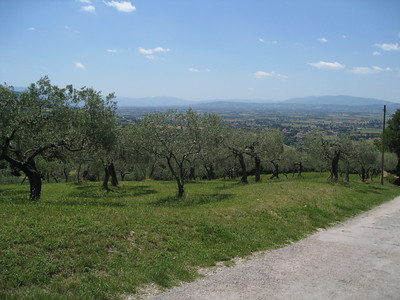 Path down to San Damiano