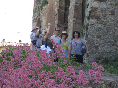 Flowers and tourists