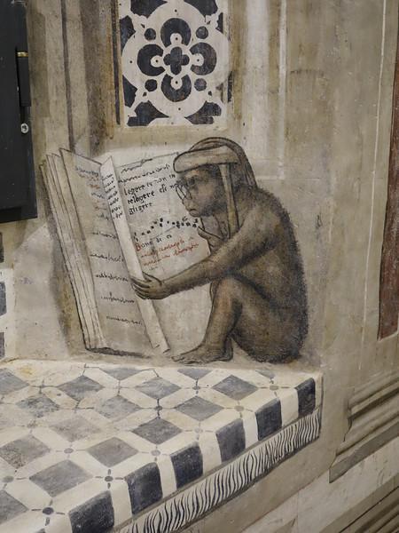 Studious monkey