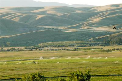 Montana 2006 - 00015