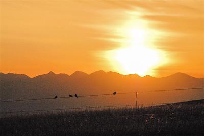 Montana 2006 - 00026