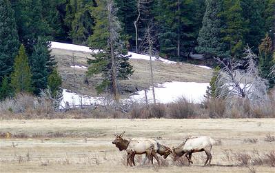 Colorado 2007 - 00010