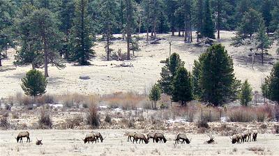 Colorado 2007 - 00025