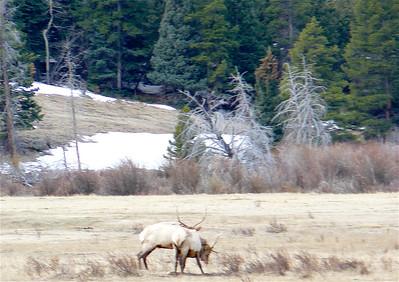 Colorado 2007 - 00013