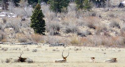 Colorado 2007 - 00023