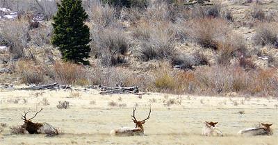 Colorado 2007 - 00024