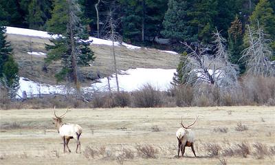 Colorado 2007 - 00014