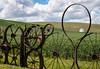 Wheel Fence Outside Dahmen Barn