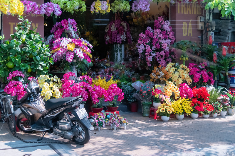 Everyone loves colorful flowers