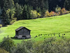 Switzerland's country side