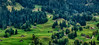 Final image of Switzerland's lovely and expansive green fields & chalets.