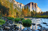 Yosemite Valley from Valley View