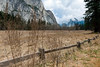 No snow in the Yosemite Valley meadows, but still beautiful.