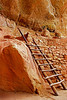 Anisazi cliff dwellings, Step House, Mesa Verde Nat. Pk. CO