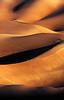 Evening walk at Great Sand Dunes Nat. Pk., CO