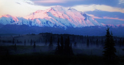 Morning mist. Denali National Park, Alaska