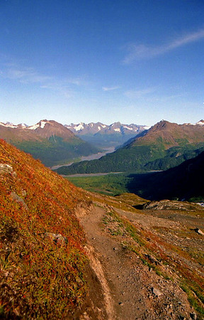 Trail to Harding Ice Field, Alaska
