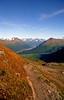 Trail to Harding Ice Field, Alaska