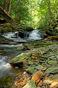 FallsTrail, Ricketts Glen State Park, Pennsylvania