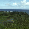 Hawaii 1982 (and 1988 and 2001)