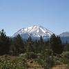 Oregon-Washington 1980