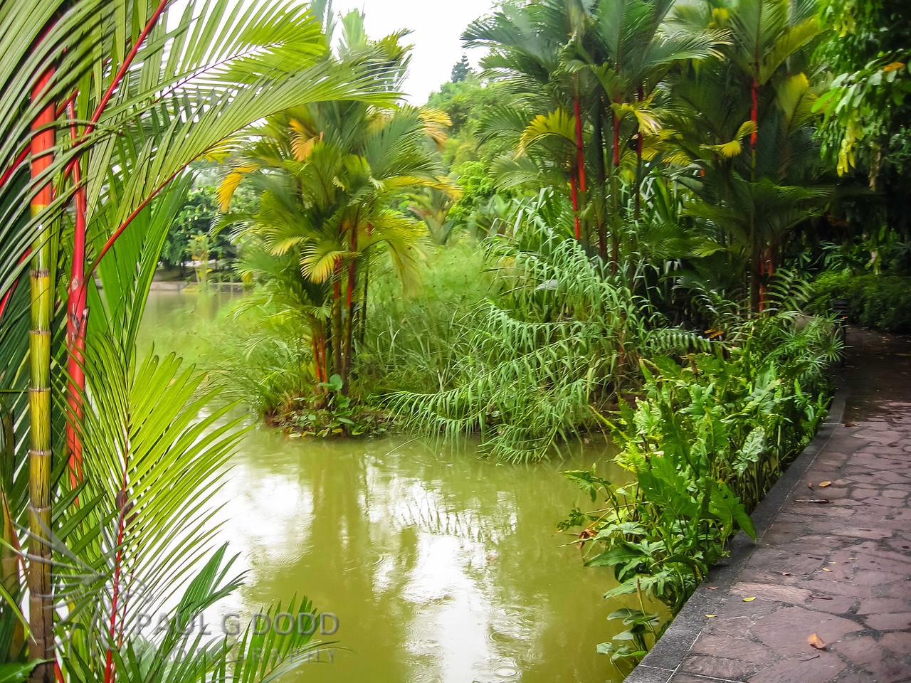 Singapore Botanical Garden, Singapore