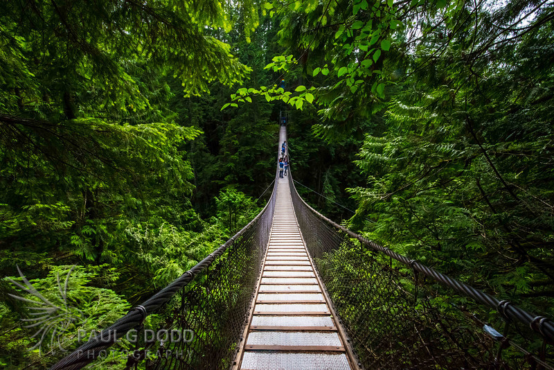 Lynn Canyon, Vancouver, British Columbia