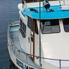 Debi Shearwater's boat, Check Mate